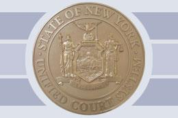 NYS UCS shield